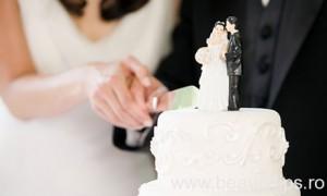Newlyweds cutting wedding cake