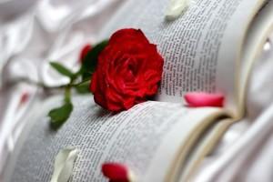 simbol trandafir
